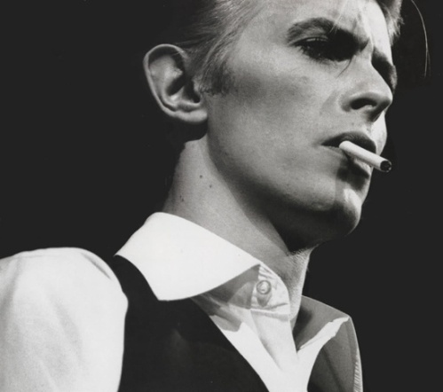 david_bowie_large_1264430711_crop_550x487